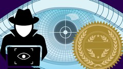 Master Nmap for Scanning & Security Auditing 2019 (NSE)