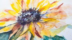Sunflowers with Watercolour