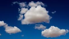 Oracle CPQ Cloud Service Implementation Essentials   1Z0-976