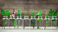 Consultations 101: Clinical Aromatherapy