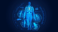 Anatomy Course I: Breaking down Bones