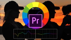 How To Color Grade & Make LUTs In Premiere Pro For Beginners