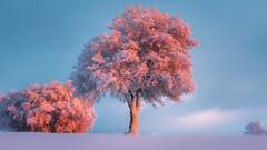 Photoshop - Ottenere fotografie HDR da professionisti