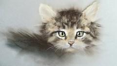 Soft Pastels Workshop: Kitten