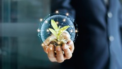 Tesouro Direto: Do Zero ao Primeiro Investimento