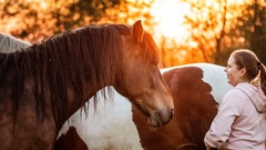 Chapter 1 of Expanding Consciousness with Horses