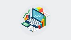 DOMINA Excel Professional 2013 en ESPAÑOL