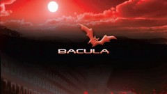 Bacula 1: the open source backup software