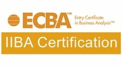 IIBA ECBA Model Questions