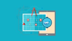SAP Log-on: Features & Functions