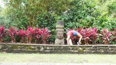 Vinyasa Yoga for Strength & Flexibility
