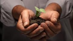Entrepreneurship: Do You Have a True Business Opportunity?