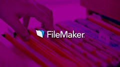 Learning FileMaker Pro 13 - A Practical Guide