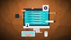 Java Programming Professional Leadership