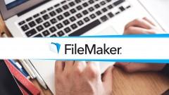 Tutor for Filemaker Pro 13: The Basics