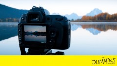 Digital SLR Cameras & Photography For Dummies Video Training