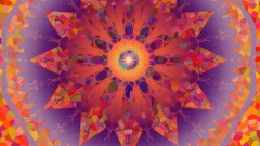 Manifest Joy, Desire, Crazy Success and Fulfillment Now