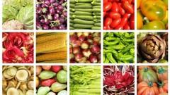 Nutrición Sana. Alimentación útil frente al Estrés.