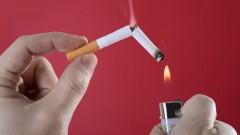 Fuma Sólo Si Quieres