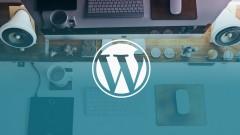 How to Use Custom Fields in Wordpress Theme Development