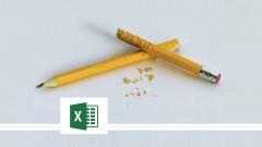 Microsoft Excel 2013: Beginner to Advanced