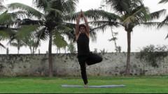 Yoga basics : 24 day course