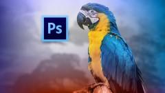 Curso Adobe Photoshop CS6: Los Fundamentos