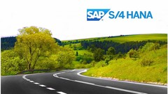 SAP S/4 HANA:                         An Insight