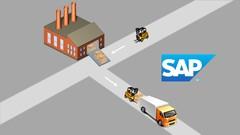 SAP Logistic Execution | Udemy