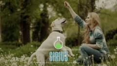 Netcurso-science-based-dog-training-with-feeling-3days