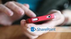Configuring SharePoint 2013 Server for Apps Development