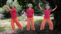 Qi Gong for Beginners : Practical Beginners Guide To Qi Gong