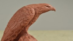 Curso de escultura: Cómo modelar un águila en plastilina