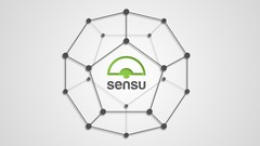 Sensu - Introduction