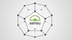 Sensu - Introduction
