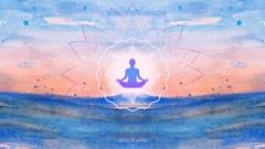 Netcurso-online-yoga-course