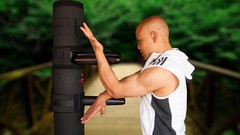 Wing Chun 116 Dummy Training | Udemy
