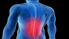 Relieving Low Back Pain Naturally (The Healthy Back)