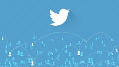 Twitter Followers: Get 100 Twitter Followers in 48 Hours