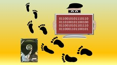 Insights into cybercrime and electronic evidence