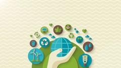 Reverse Logistics Management and Sustainability | Udemy