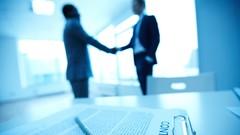 Transform Your Idea Into A Profitable Business: PARTNERSHIPS