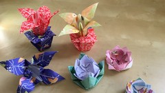 School of Origami: Learn How to Fold and Master Origami