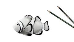 Tiere Zeichnen - Der praxisorientierte Komplettkurs