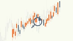How To Trade Forex Like A Pro - The Principles of FX Trading