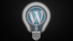 Netcurso-dein-erstes-professionelles-wordpress-plugin-von-a-z