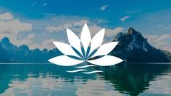 Curso Curso de Meditación Mindfulness - 8 semanas