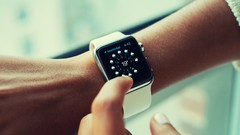 Developers Guide to the Watchkit SDK