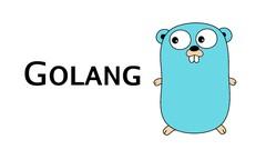 Beginners : Google's Go (golang) Programming Language