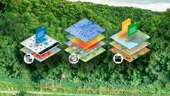 Curso de manejo forestal con ArcGIS (Intermedio-Avanzado)